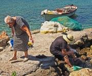 Havens en Visserij -Even een vers maaltje vis gehaald