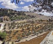 Kidrondal, Getsemane en de Olijfberg gezien vanuit Jeruzalem